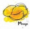 Студия красоты манго полевской