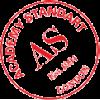 Академия стандарт